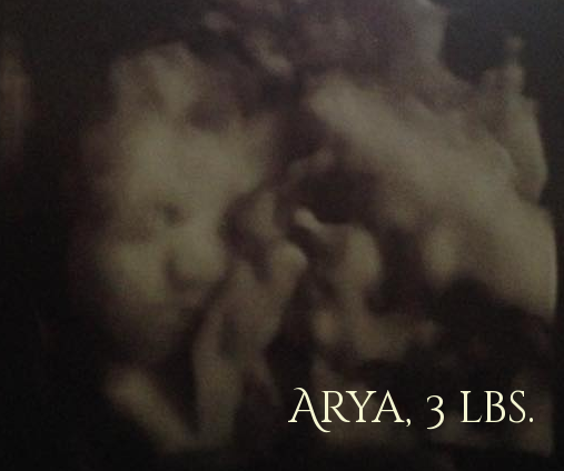Arya3lbs